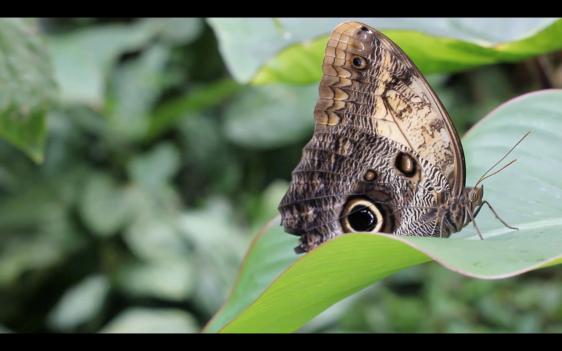 Screen Shot 2014-03-12 at 18.25.18